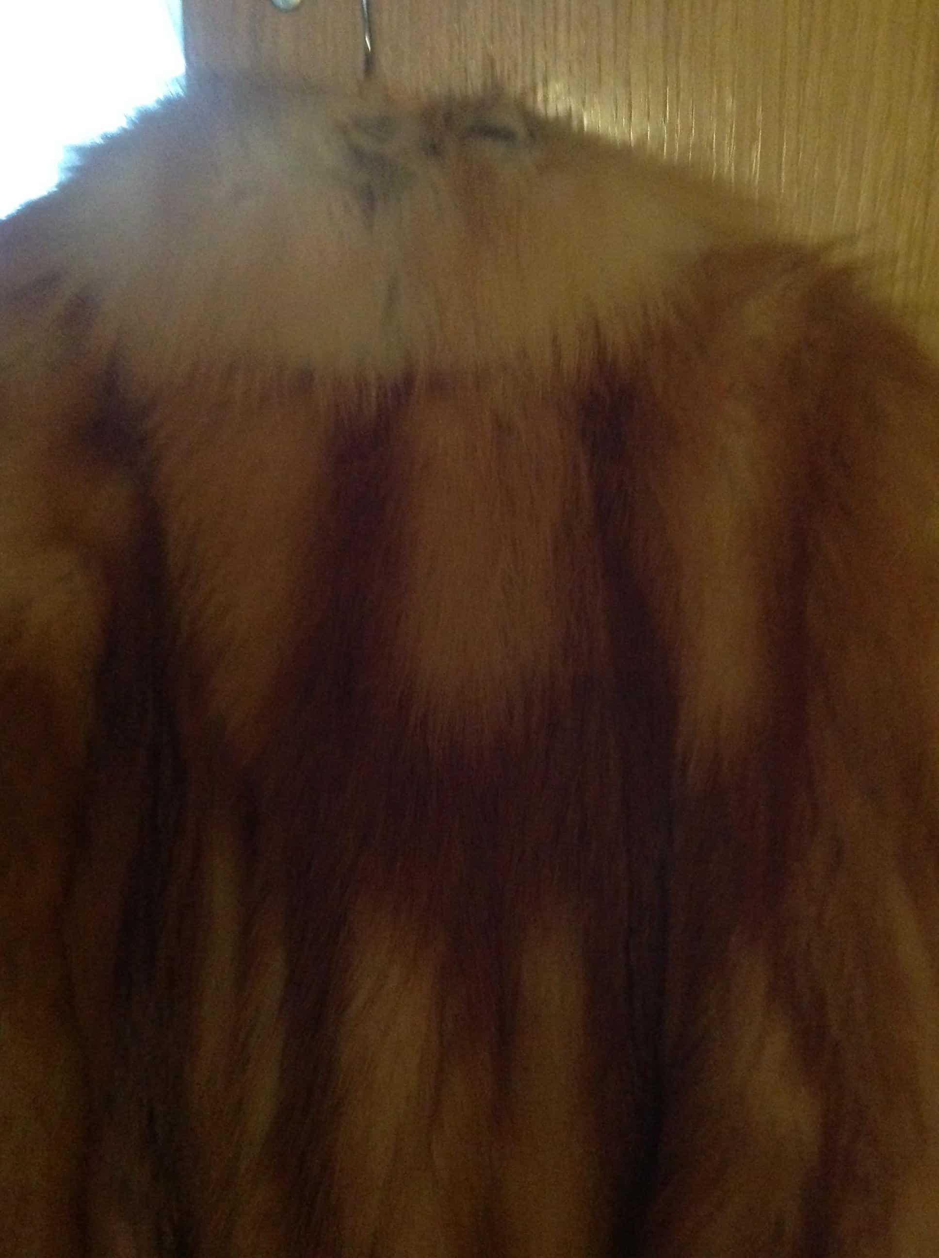 Chaquetón piel de zorro 1