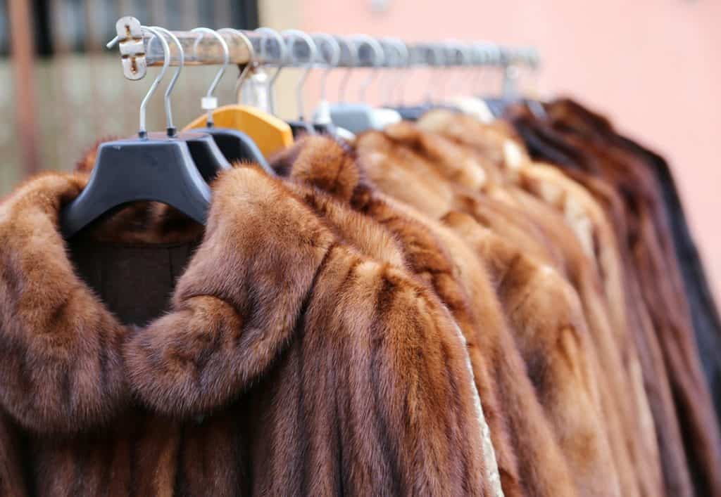 Peleterías compra venta abrigos de piel de segunda mano