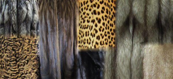 compra de abrigos de piel